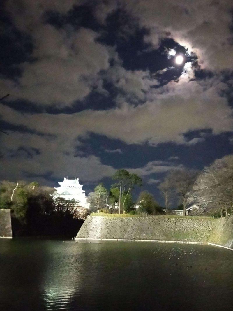 月と名古屋城